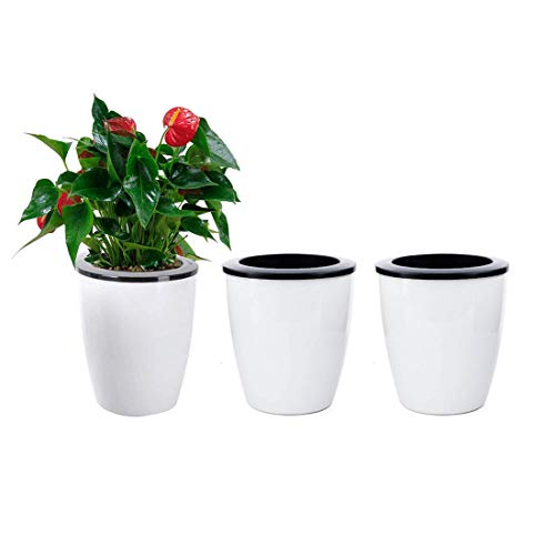 3 Pack Self Watering Planter White Flower Pot for All Plants, Herbs, African Violets, Succulents, Flowers Or Start Plants, White, M Size