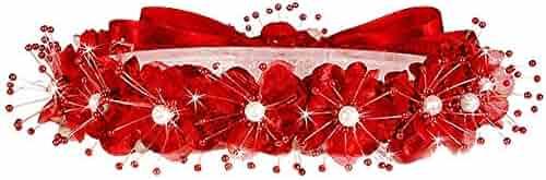 9838c478dcd AMJ Dresses Inc Big/Little Girls Flower Girl Communion Pageant Wedding  Easter Dress