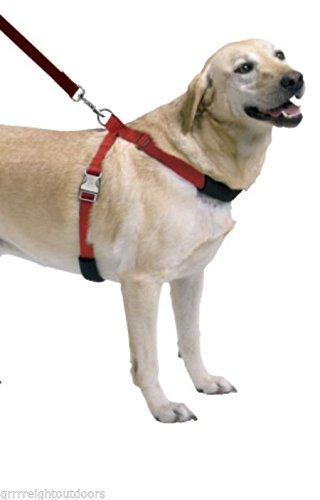 Sporn Simple Dog Control Blue L/XL Harness Girth 27-41 Inch Labradors Collies