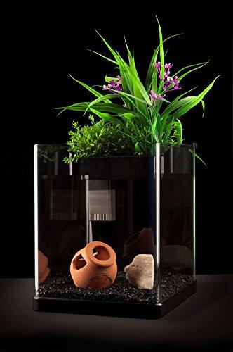 Nanoponic Aquarium W/ Planted Top 3Gal, Black