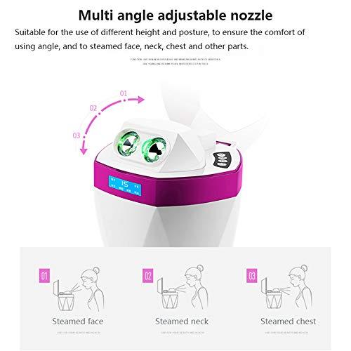 ZQG BEAUTEY Nano Aromatherapy Facial Steamer Hot and Cold Spray Facial Moisturizing Cleansing Facial Facial Sauna Spa -