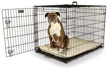Petco Classic 1-Door Dog Crates