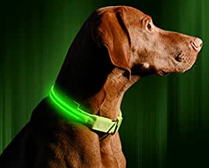 "LED Dog Collar, USB Rechargeable, X-Small (9 - 13.7"" / 23 - 35cm), Neon Green"