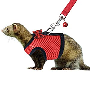 RYPET Small Animal Harness and Leash - Soft Mesh Small Pet Harness with Safe Bell, No Pull Comfort Padded Vest for Small Pet 11