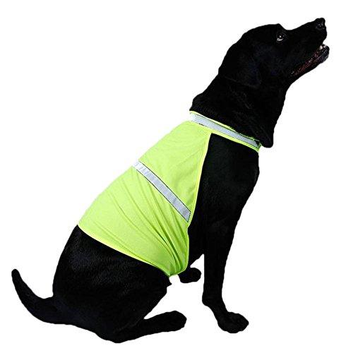 C-Pioneer New High Viz Hi Visibility Pet Dog Cat Reflective