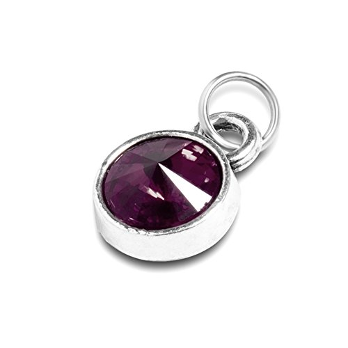 Extral Birthstone Charm for Necklace Bracelet Custom Small Pendant ()