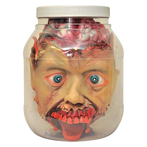 Forum Novelties 53282 Standard Head in Laboratory Jar Party Supplies, One Size, Multicolor -