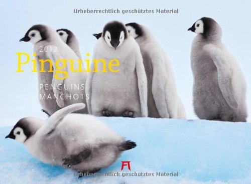 Pinguine 2012