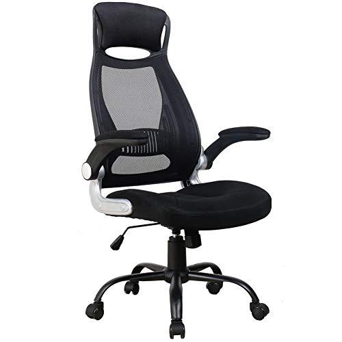 OWLN Ergonomic High Back Mesh Office Chair with Adjustable Headrest and Armrest Desk Chair