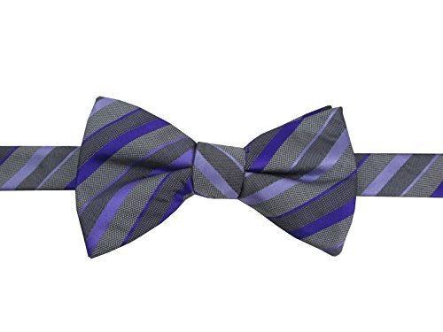 Alfani Spectrum Pre-Tied Bow Tie (One Size, Purple/Grey Stripe) from Alfani