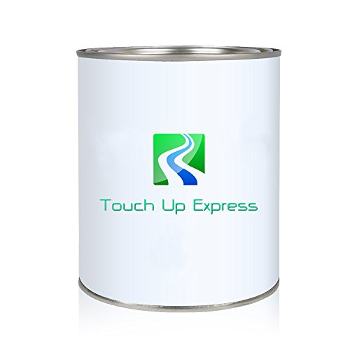 Touch Up Express Paint for Ford Focus P9 Frosted Glass Metallic Pint Single Stage Paint for Car Auto Truck