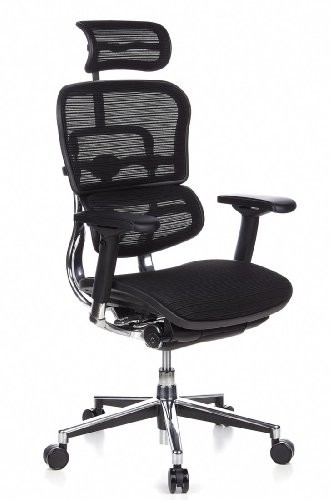 Ergohuman Bürostuhl mit Netz-Stoff, schwarz