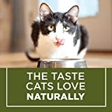 Purina Cat Chow Hairball, Healthy
