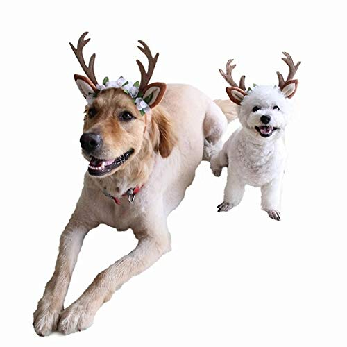 Stock Show Dog Cat Xmas Costume Reindeer Headband Costume with Flowers Holiday Christmas Adjustable Elk Antlers Ears Wearable Headgear Holiday Party Costume for Cats Small/Medium/Large Dogs