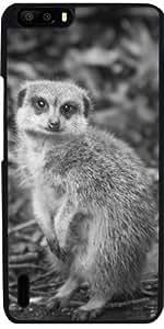 Funda para Huawei Honor 6 Plus - Fauna Meerkat by WonderfulDreamPicture