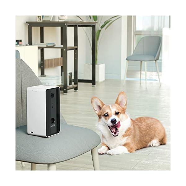 Smart Pet Camera Treat Tossing Iseebiz Dog Treat Dispenser 2-Way Audio Communication and 720P Night Vision APP Control…