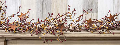 CWI Gifts Pip Berry and Star Garland, 40-Inch, Burgundy/Old for sale  Delivered anywhere in USA