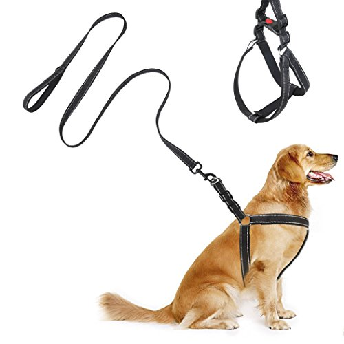 Dog Leash Harness Set, Adjustable Durable Leash No Pull Dog Collars Leash Set,Heavy Duty Reflective Dog Leash Collar for Small, Medium and Large Dog