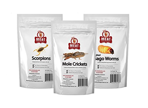 Meat Maniac Edible Insect Sampler Gift Pack- Meat Maniac Salted Armor Tail Scorpions, Meat Maniac BBQ Mole Crickets & Meat Maniac Salted Sago Worms