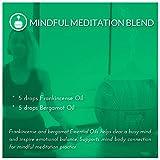 ArtNaturals Therapeutic-Grade Aromatherapy Essential Oil Set – (8 x 10ml) - 100% Pure of the Highest Quality Oils – Peppermint, Tea Tree, Lavender, Eucalyptus Variant Image