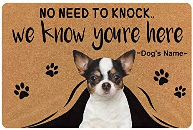 MyPupSocks Custom Personalized Text Name Pet Dog Cat Photo No Need to Knock We Know You re Here Doormat with Pet Name 23.6 x 15.7 Inches Door Floor Mat Outdoor Indoor Front Welcome Mat Kitchen Rug