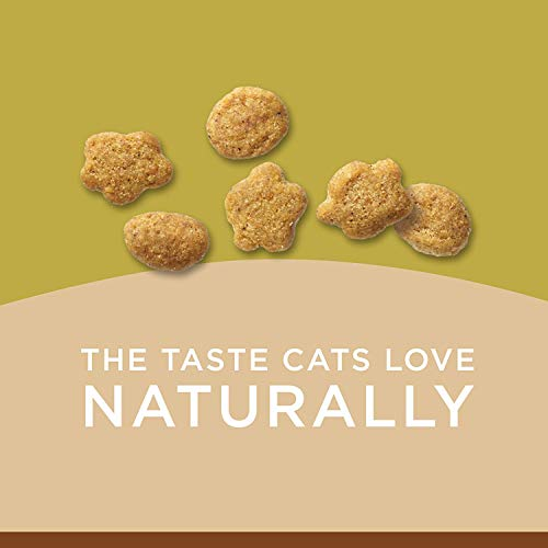 Purina Cat Chow Naturals Grain-Free With Real Chicken Adult Dry Cat Food 4