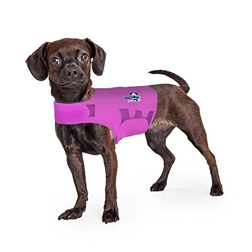 Mellow Shirt Dog Anxiety Calming Wrap, X-Small, Radiant Orchid