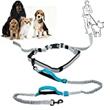TOP-MAX Hands Free Dog Leash with Durable Dual-Handle Bungees, Reflective Stitching Adjustable Waist Belt, Free Control for up to 150 lbs Large Dogs, Great for Running, Jogging or Walking