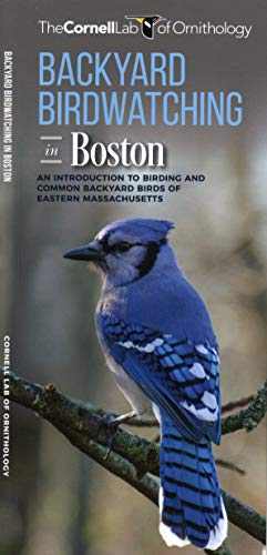 Backyard Birdwatching in Boston: An Introduction to Birding and Common Backyard Birds of Eastern Massachusetts (Wildlife and Nature Identification) (In Ct Waterford Stores)