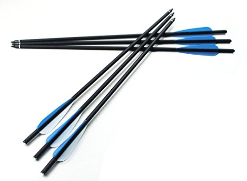 Archery Carbon Fiber Arrows 20 Inch Shaft Hunting Bolt with Field Points Replaceable Screw-in Broadhead for Crossbow Outdoor Hunting Target Practice 6 pcs BC-Hunt