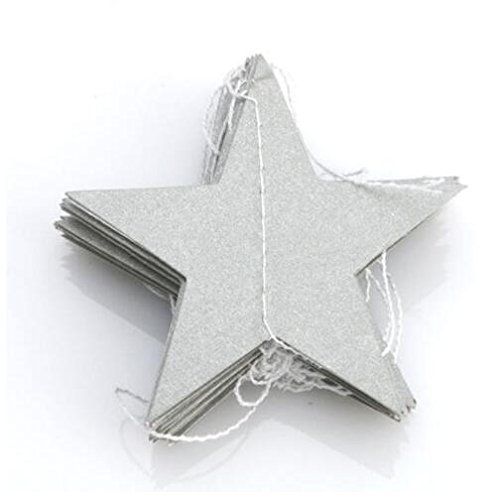 Since Pack of 4 Wall Hanging Paper Star Garlands 4m Long Birthday String Chain Wedding Party Banner Handmade Children Room Door Home Decoration (Silve…