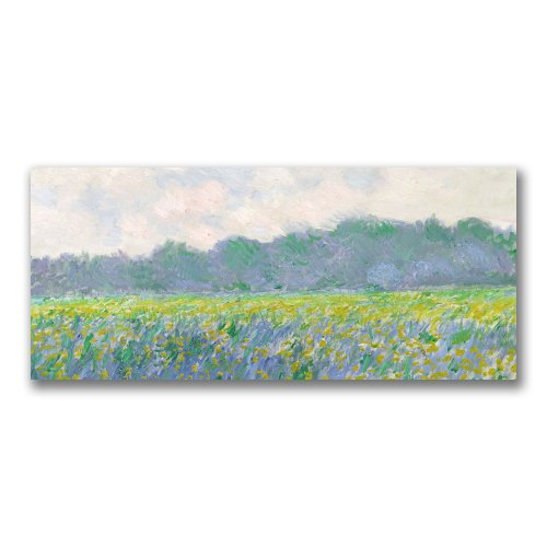 Field Of Yellow Irises At Giverny by Claude Monet, 20x47-Inch Canvas Wall Art ()