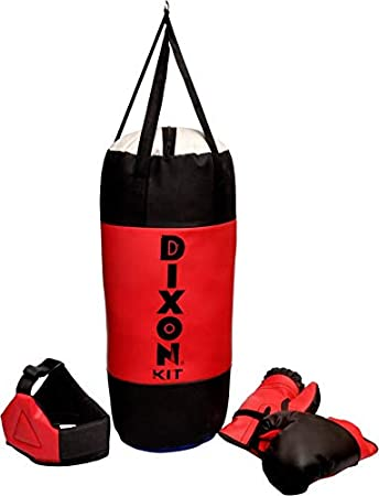 Toyshine Dixon Kids Polyester Boxing Kit with Gloves and H