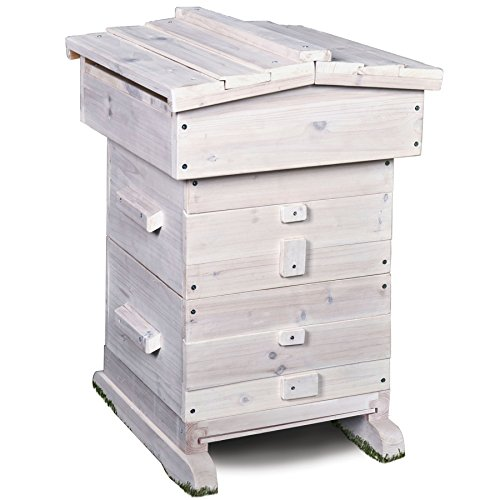 Ware Manufacturing Home Harvest Bee Hive
