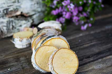 Natural Mini Wood Slices, Round Birch Slabs, 1.5 to 2.5 inches, Rustic Tree Bark Slice, Weathered Branch Disc, Outdoor Country Barn Wedding Table Centerpiece, (100 Pack)