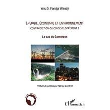 Energie, économie et environnement contradiction ou co-déve.