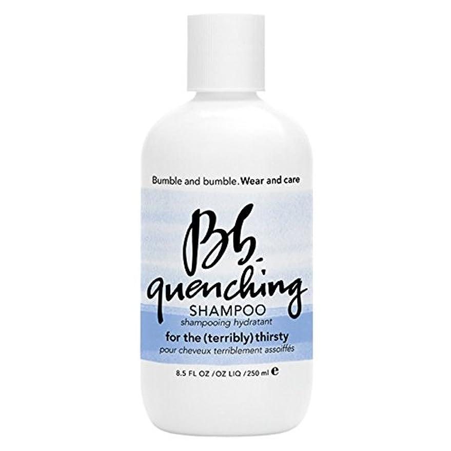 黙歩行者延期するバンブルアンドバンブル急冷シャンプー250ミリリットル (Bumble and bumble) (x2) - Bumble and bumble Quenching Shampoo 250ml (Pack of 2) [並行輸入品]