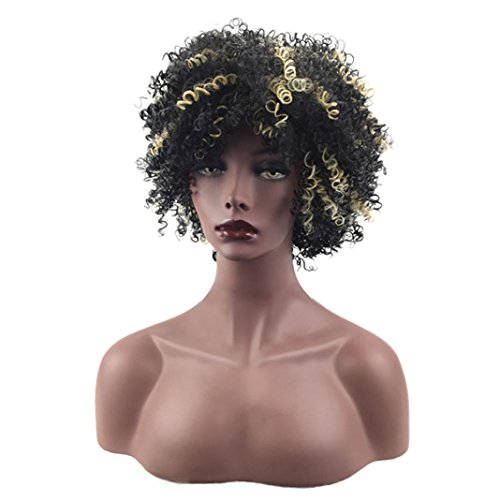 (Sandistore 36'' Europe and the United States Wigs Female Black Fashion Short Hair African Hair)