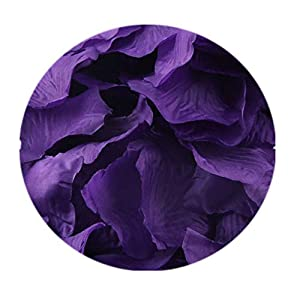 Muranba 2019 ! 200pcs Burgundy Silk Rose Artificial Petals Wedding Party Flower Favors Decor (E) 39