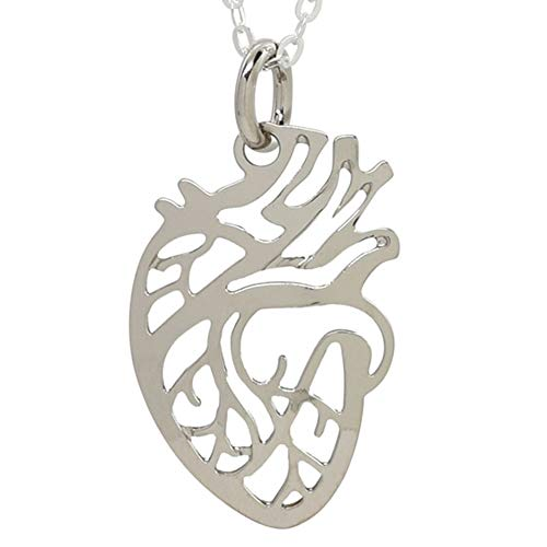 Boutique Academia Anatomical Heart Necklace - Science Jewelry For Scientist, Medical Student, Doctor, or Teacher - Rhodium Silver