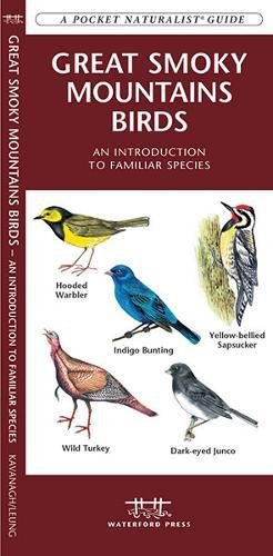 Great Smoky Mountains Birds: A Folding Pocket Guide to Familiar Species (A Pocket Naturalist Guide) (Smoky Wildlife Mountain)