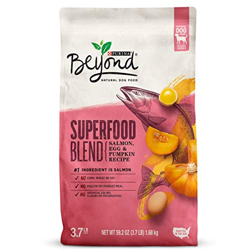 Purina Beyond Natural Dry Dog Food; Superfood