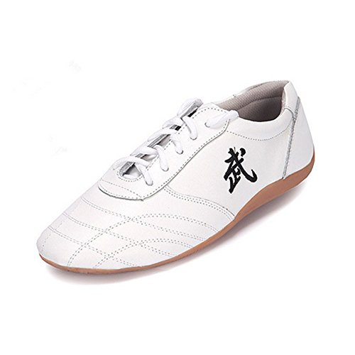 BJSFXDKJYXGS Chinese Wushu Shoes taolu Kungfu Shoes Practice Martial Arts Shoes Taichi Shoes for Men Women Adults Fashion Sneakers (US9//EUR43//26.5CM, White)