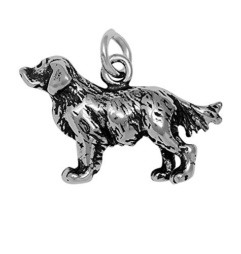 - Raposa Elegance Sterling Silver 3D Golden Retriever Charm (approximately 12.5 mm x 20 mm)