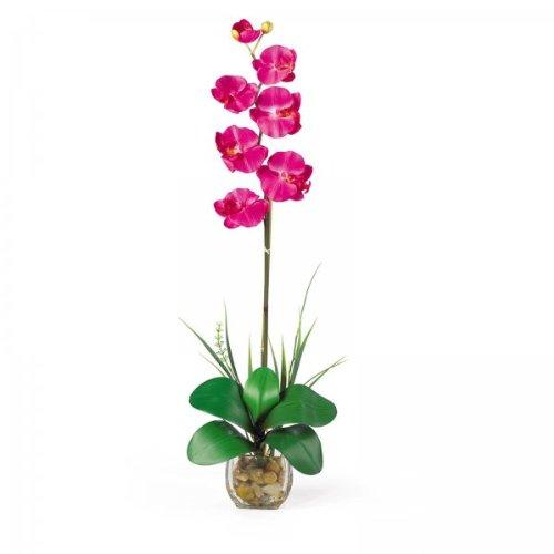 Single Phalaenopsis Liquid Illusion Flower Arrangement (Beauty) (27