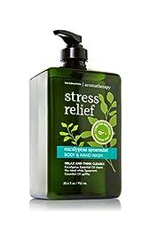 Bath Body Works Aromatherapy Eucalyptus Spearmint Hand and Body Wash Limited Premium Size 25.4 Ounce