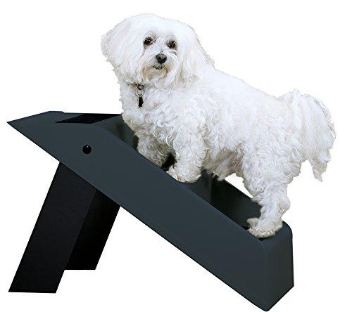 Hundetreppe Hunderampe zusammklappbar bis 35 kg belastbar Farbe antrazit/schwarz