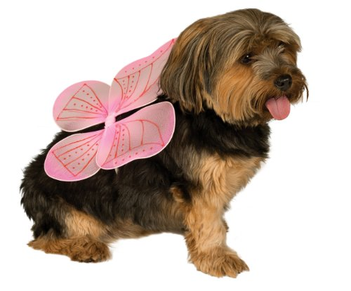 Rubie's Pet Costume Pink Fairy Wings, Medium to Large (Holloween Costume Photos)