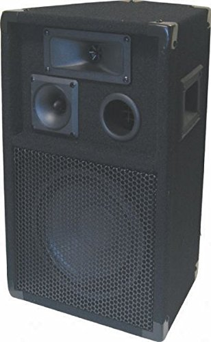 GEM Sound TR101 Passive 10-Inch DJ Speaker