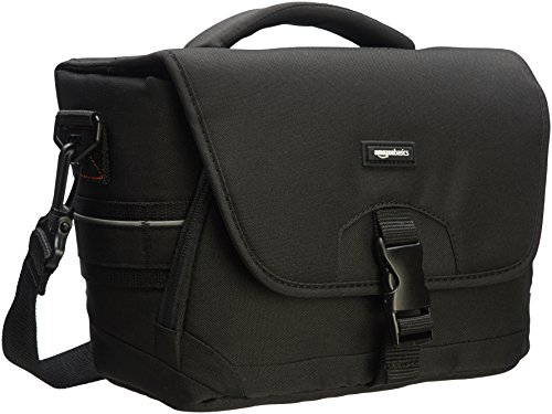 AmazonBasics Medium DSLR Gadget Bag (Gray ()
